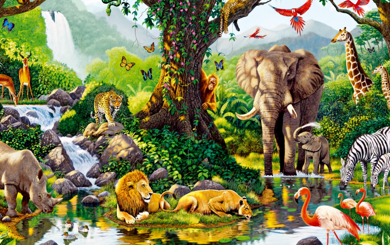 jungle animals seven wallpapers jungle animals seven stock photos