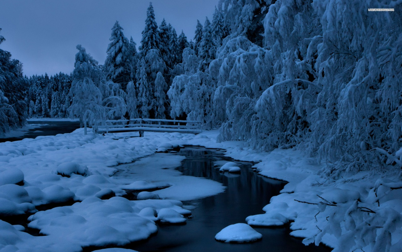 blau winter b ume snowy creek hintergrundbilder blau winter b ume snowy creek frei fotos. Black Bedroom Furniture Sets. Home Design Ideas