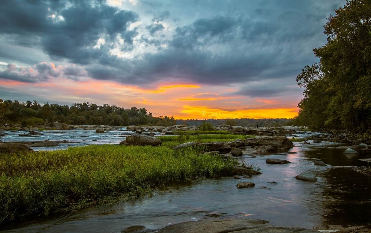 River Grass Rocks Trees Sunset wallpapers
