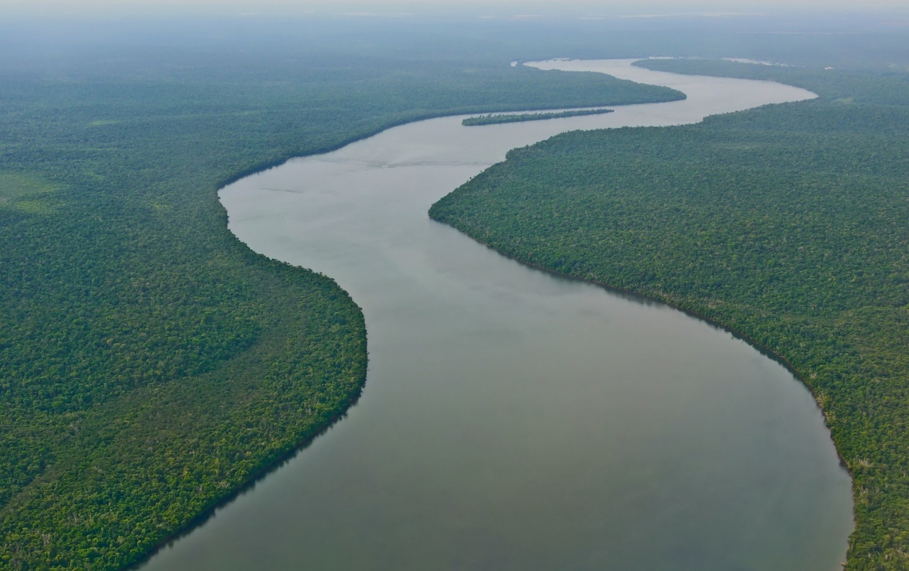 Amazon river south america wallpapers amazon river south for Amazon wallpaper