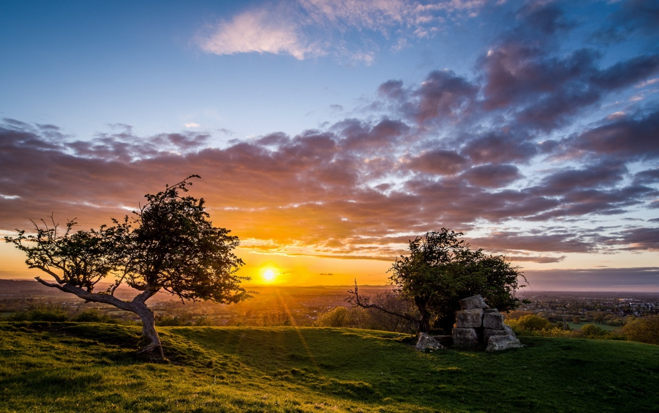 Hill Rocks Trees Valley Sunset Wallpapers