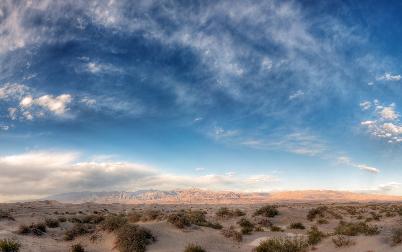 Desert Plants Mountains Sky wallpapers