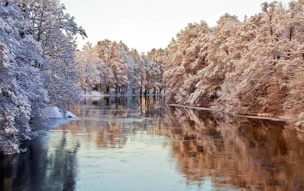 Lovely Frozen Trees & River wallpapers