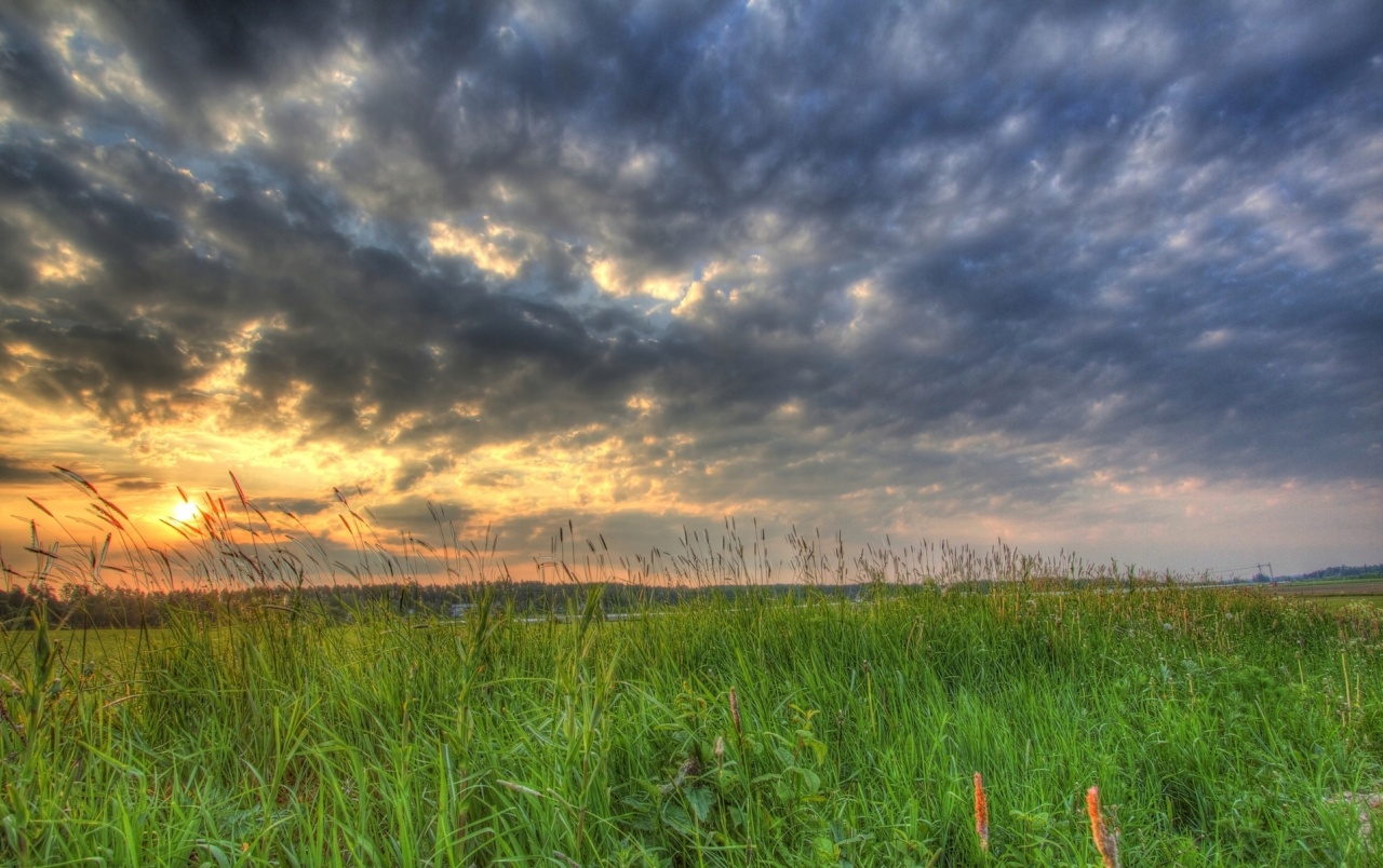 grass field sunset. OriginalWide Grass Field Dark Clouds Sunset Wallpapers