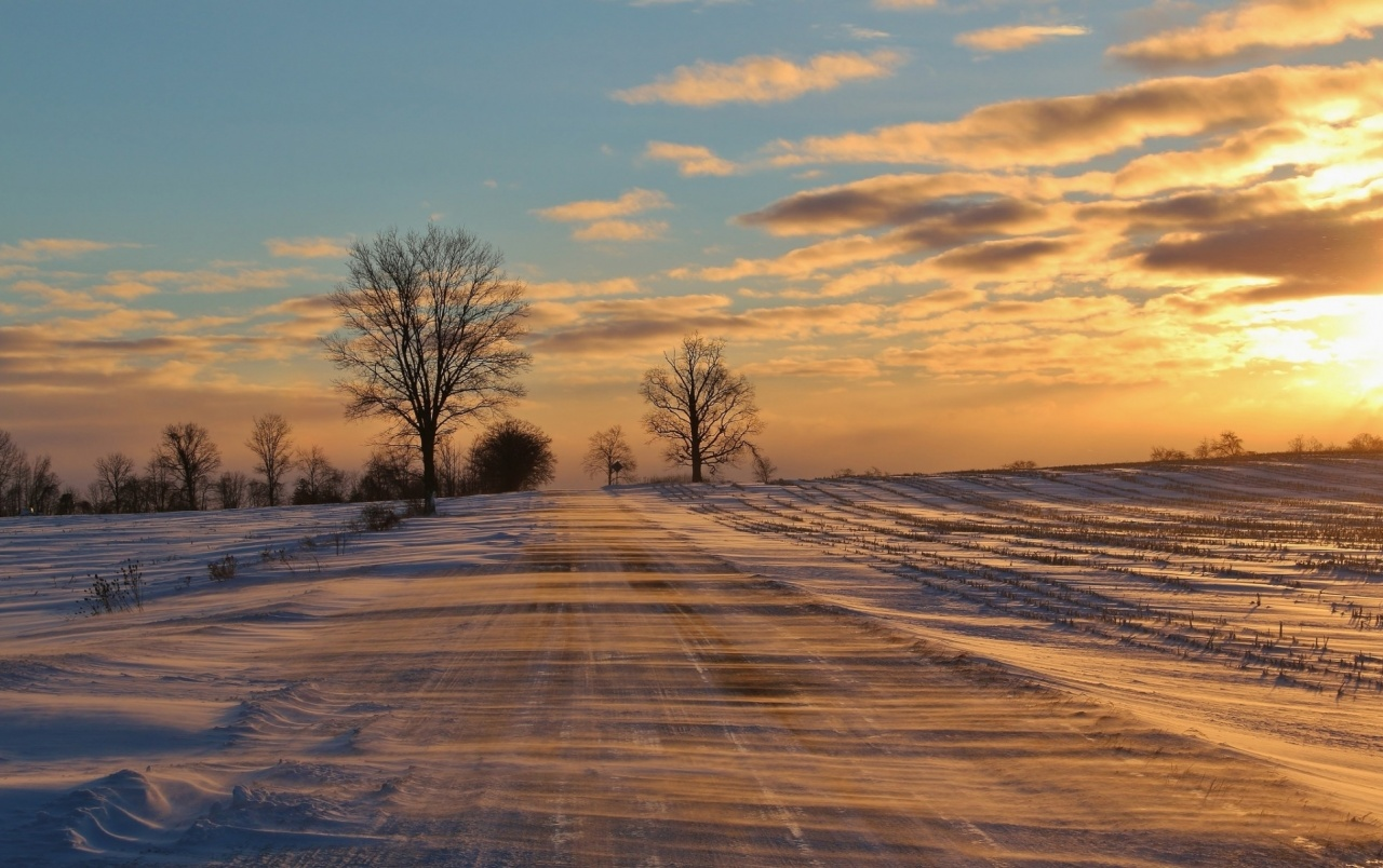 Winter Road Field Trees Sunset wallpapers