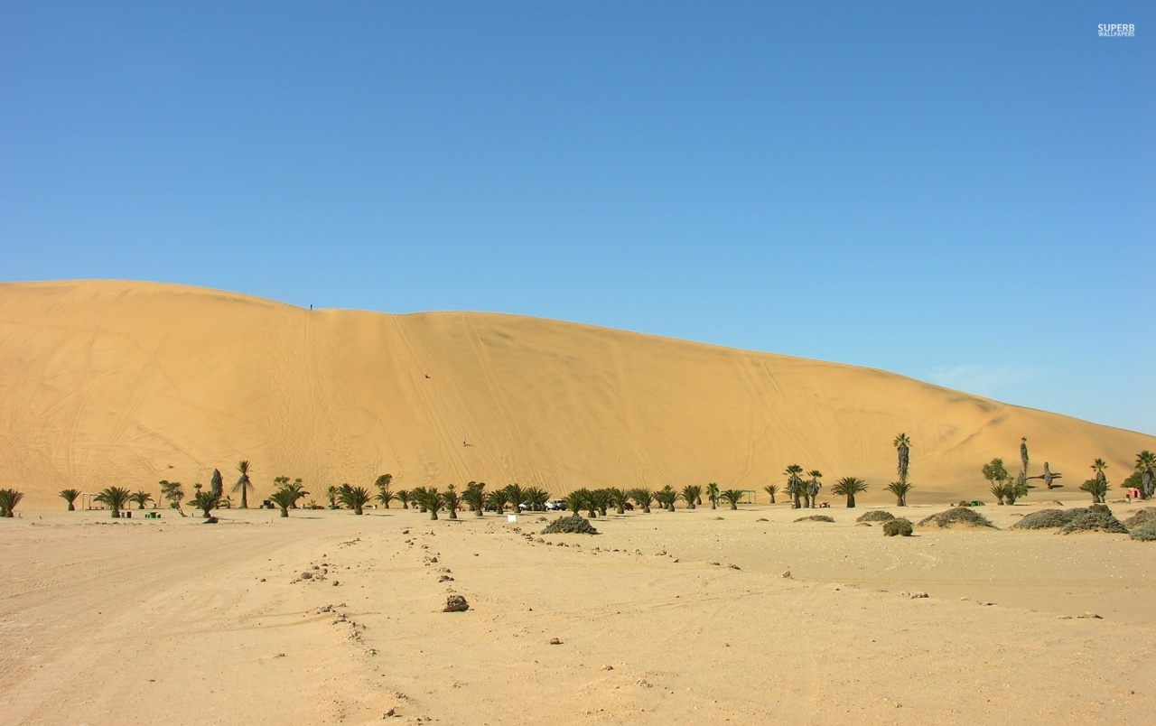Golden Namib Desert Africa wallpapers
