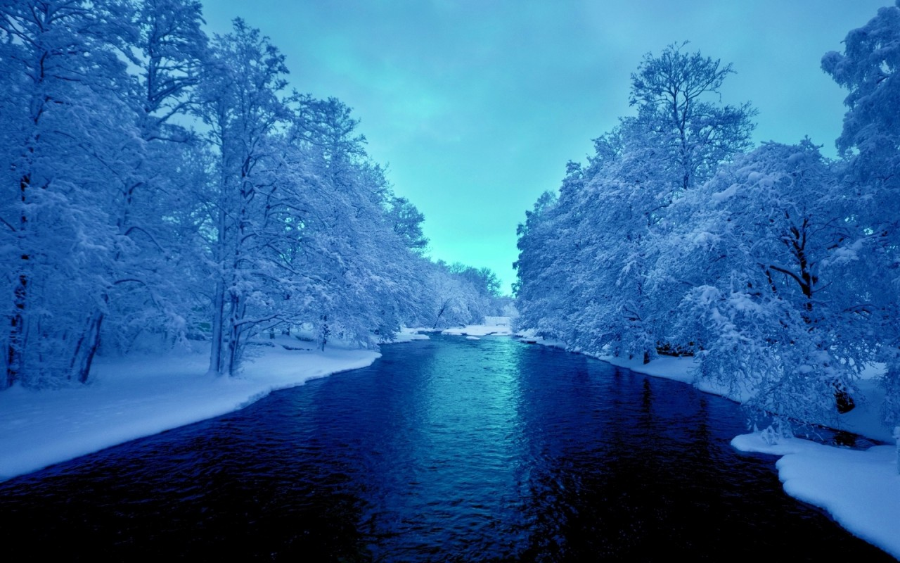 deep blue river white trees wallpapers deep blue river white trees