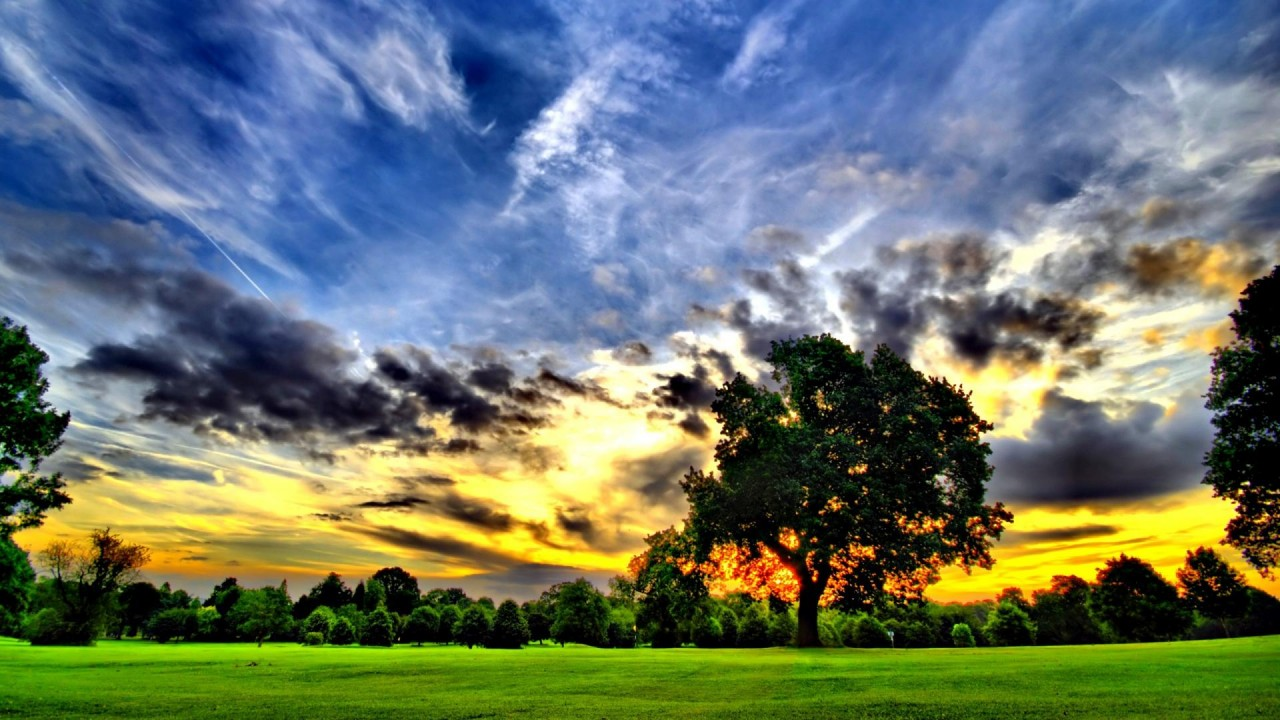 Trees Lawn Clouds Glorious Sun wallpapers