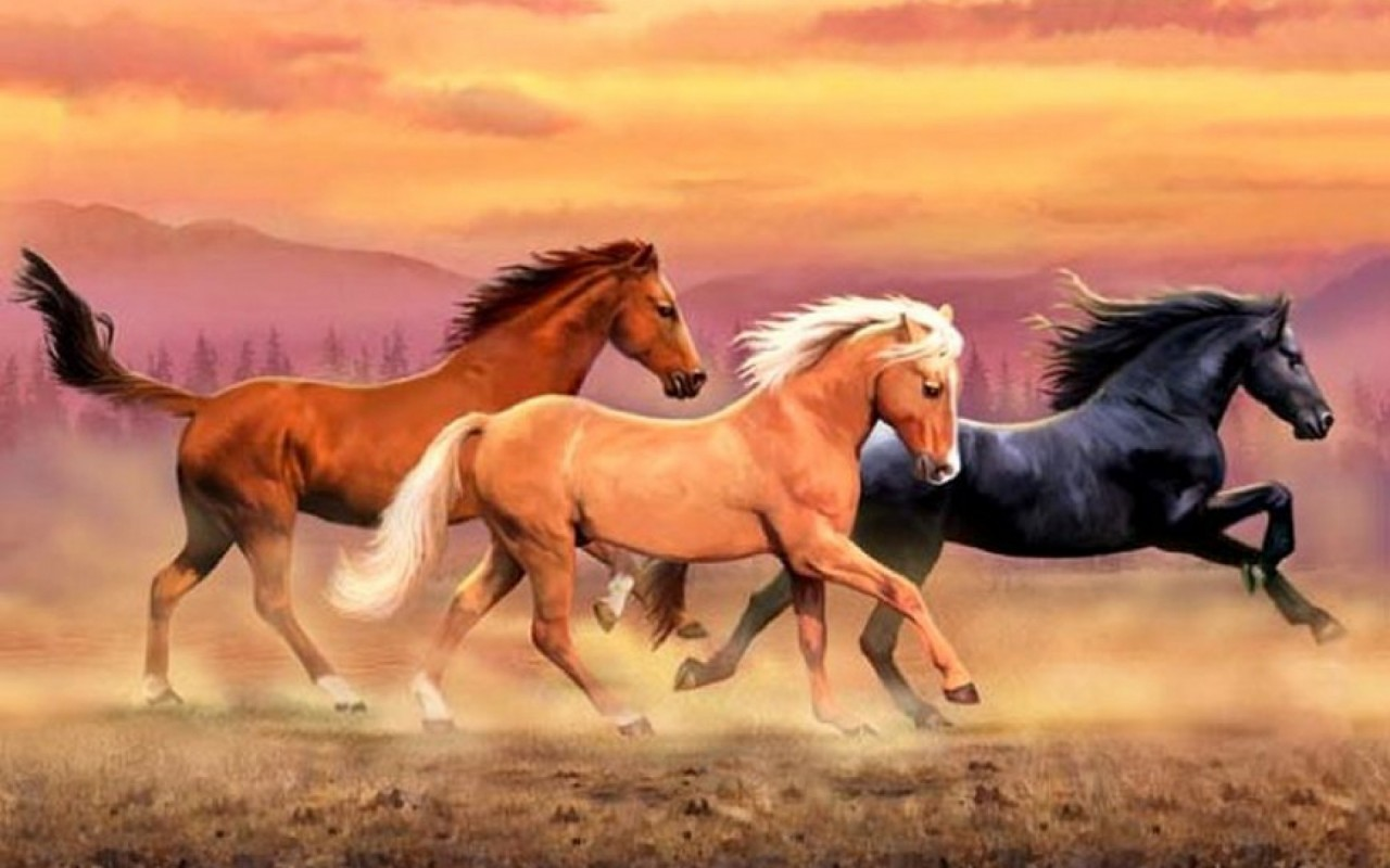OriginalWide Mountains Wild Horses Dust wallpapers