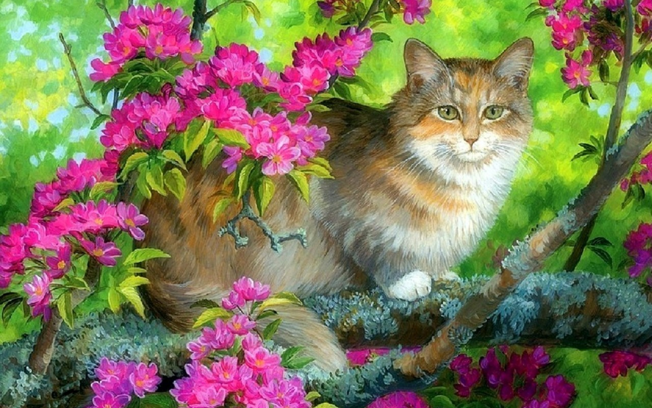 Cute Kitty Boughs Pink Flowers wallpapers
