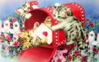 Funny Kittys Letter Of Love wallpapers