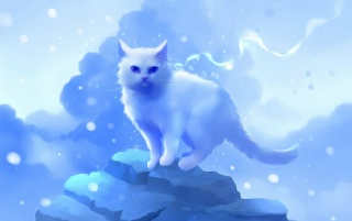 Cute White Kitty Rock Clouds wallpapers