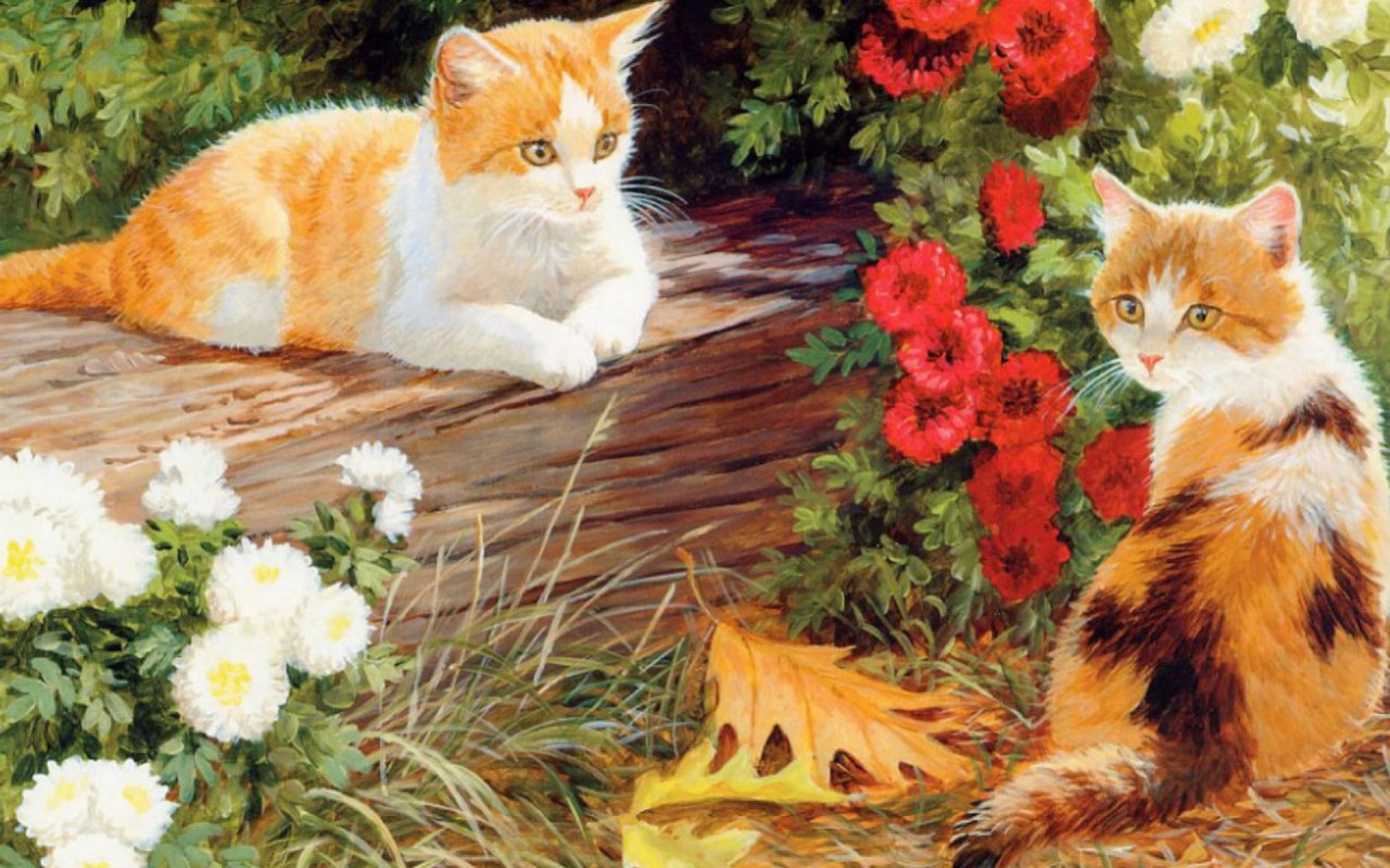 Cute Kittys White & Red Floral wallpapers