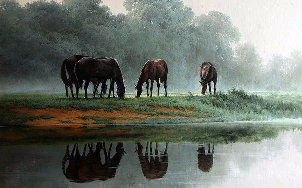 trees wild horses meadow pond wallpapers