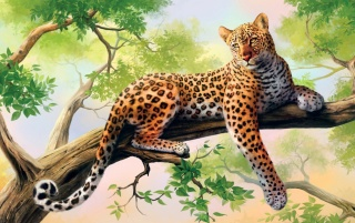 Majestic Leopard Boughs wallpapers