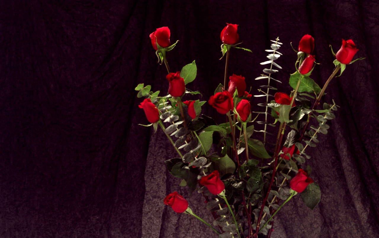 bunch of red roses wallpapers | bunch of red roses stock photos