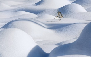 Hills covered with snow wallpapers