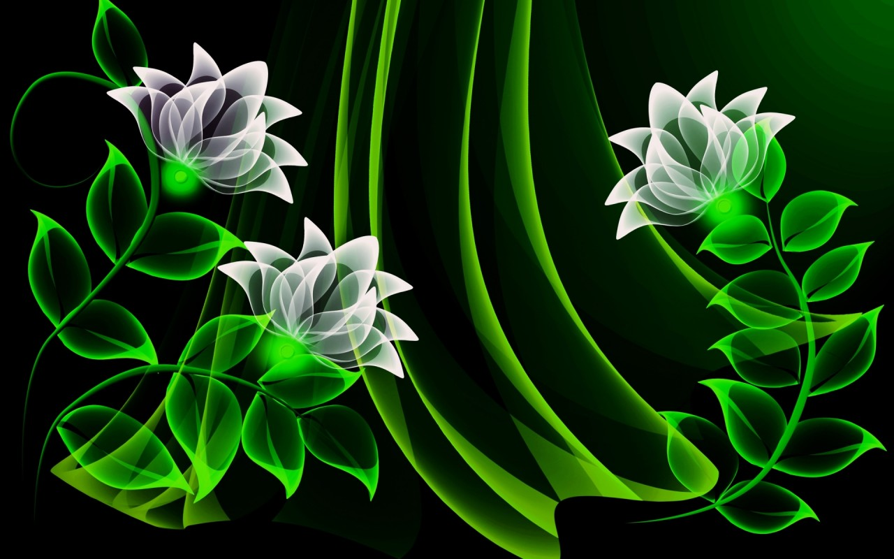 White Flowers Green Leaves Wallpapers And Stock Photos
