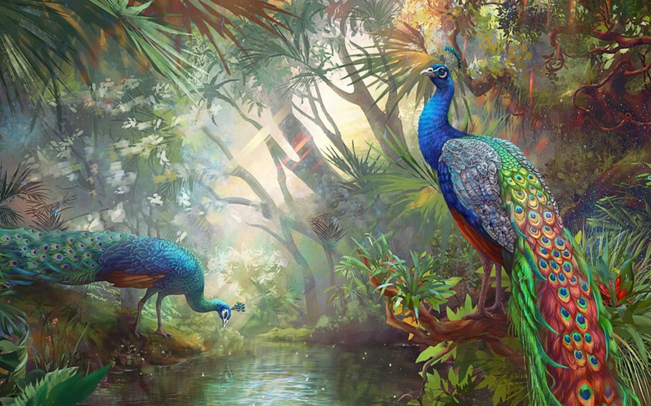 Terrific peacocks paradise wallpapers terrific peacocks - Art village wallpaper ...