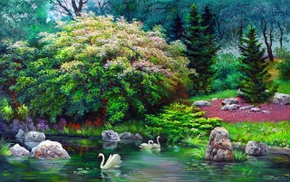 Pretty Trees Pond Swans Rocks wallpapers