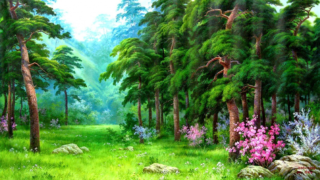 Forest Meadow Rocks Flowers wallpapers