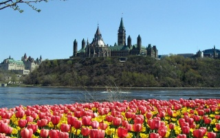 Parliament Hill wallpapers