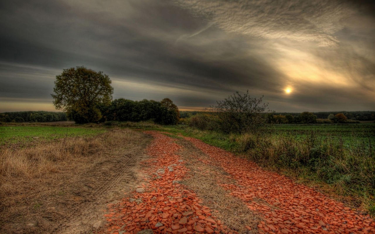 Country Road Fields Trees Dusk wallpapers