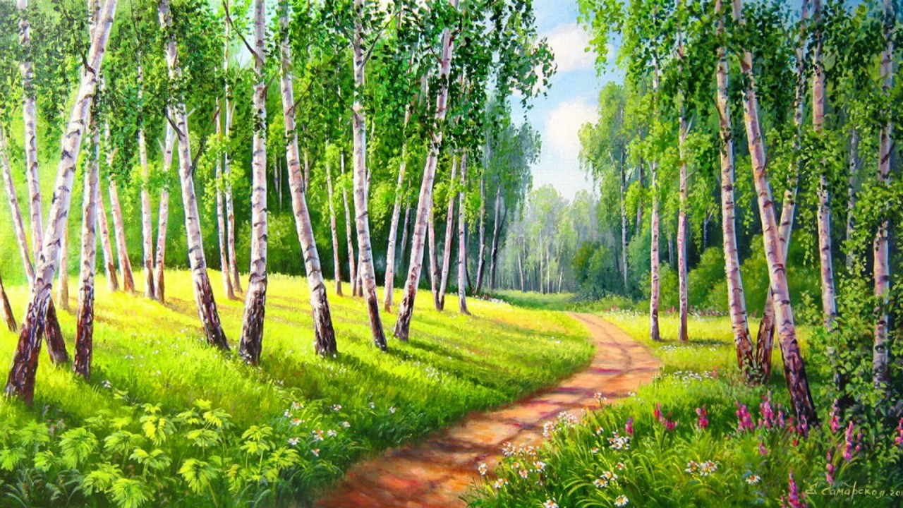Birch Trees Way Meadow Sunny wallpapers