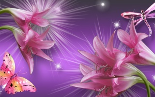 Pink Lilys Butterfly Dragonfly wallpapers