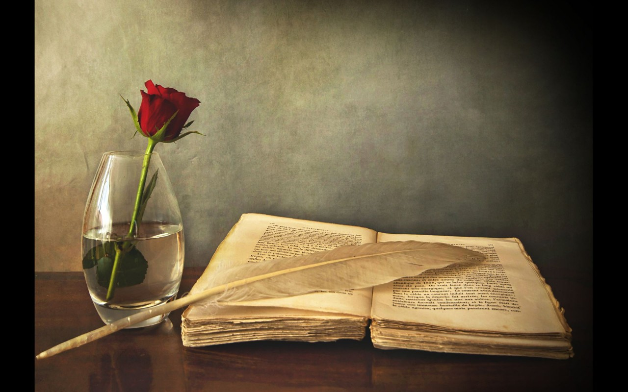 Rose Book & Feather Wallpapers
