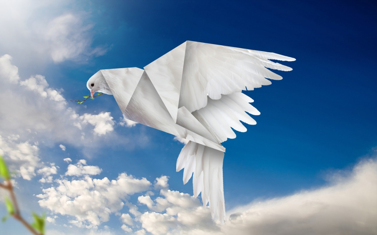 Origami Dove wallpapers | Origami Dove stock photos - photo#7