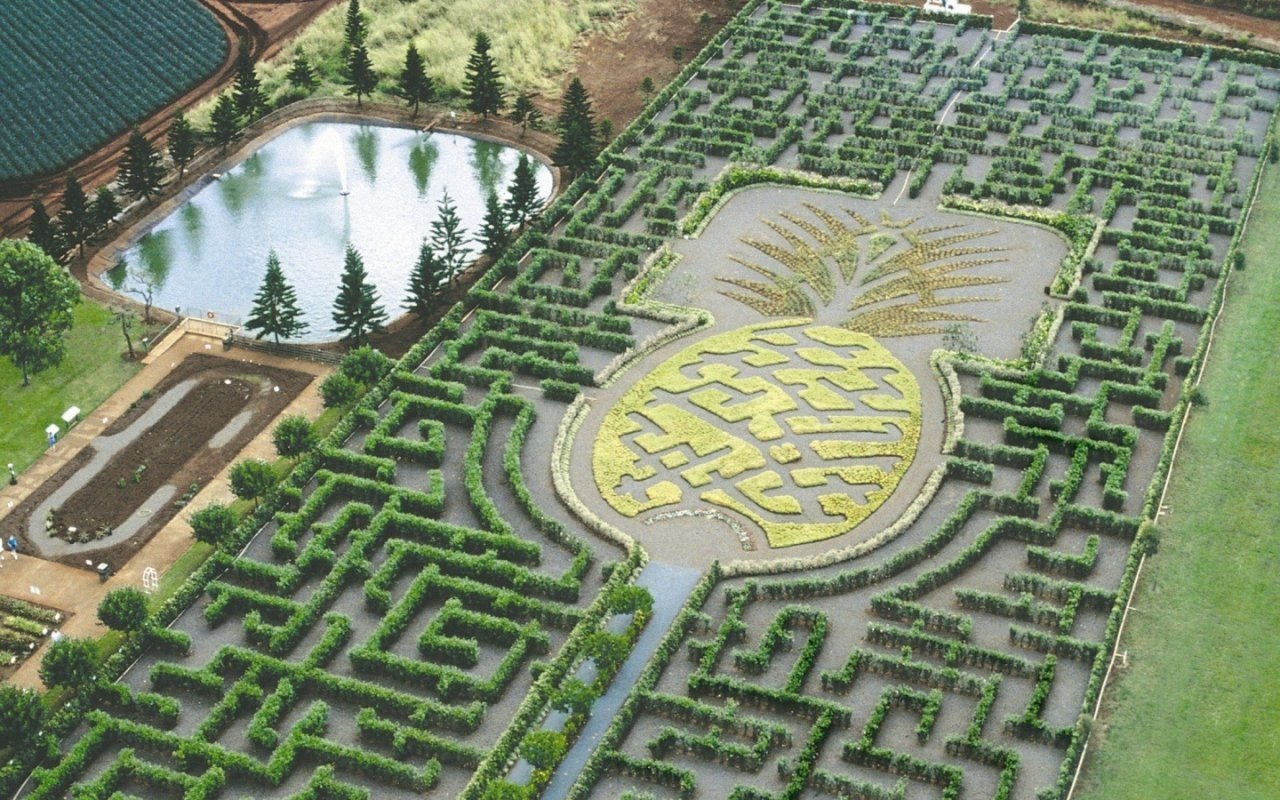 Pine Apple Garden Maze Hawaii wallpapers