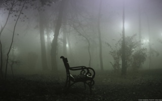 Fog Alone Dark wallpapers