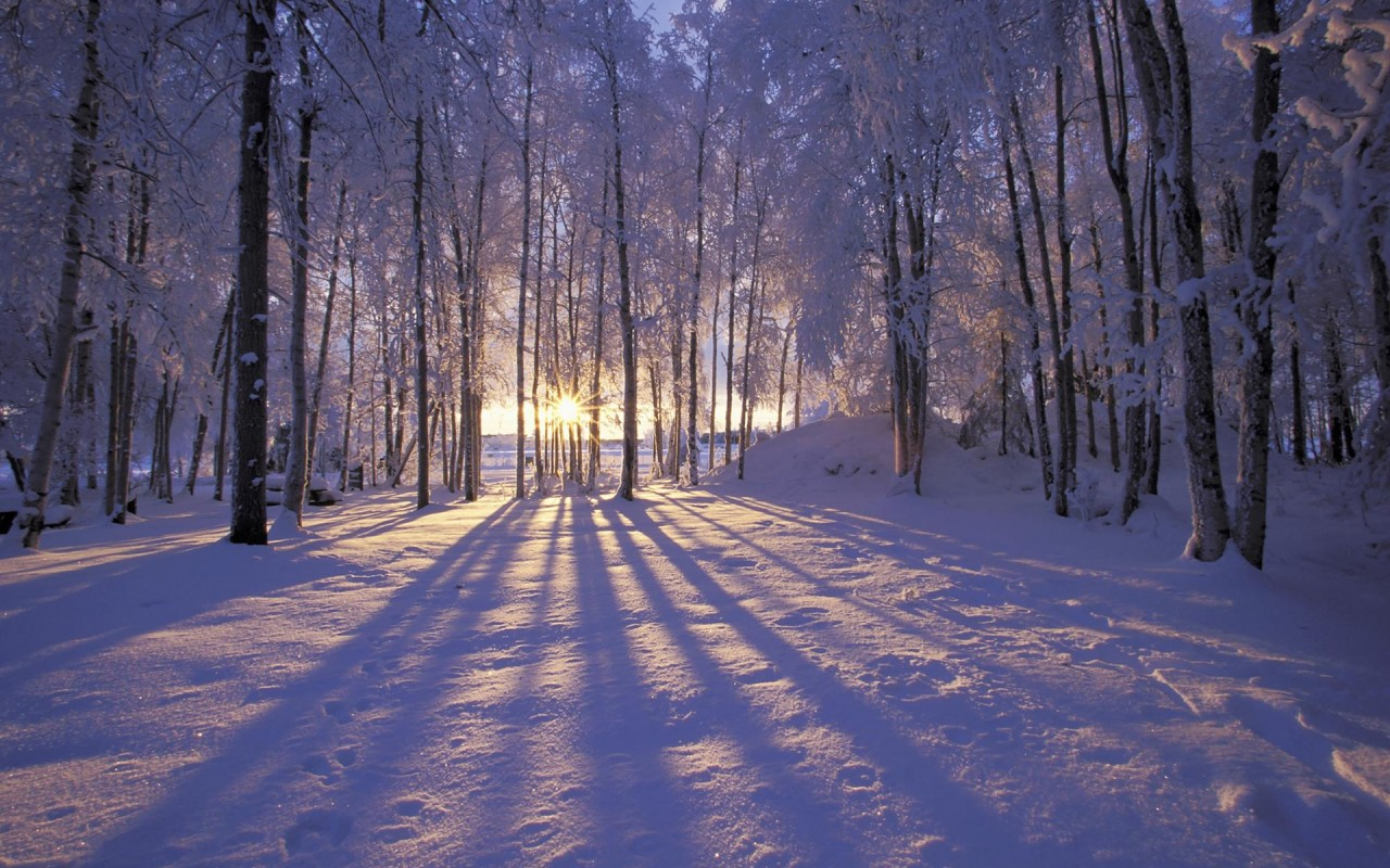 Free winter beautiful wallpapers free winter beautiful stock originalwide free winter beautiful wallpapers voltagebd Image collections