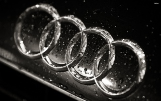 Logotipo mojado de Audi, coches wallpapers