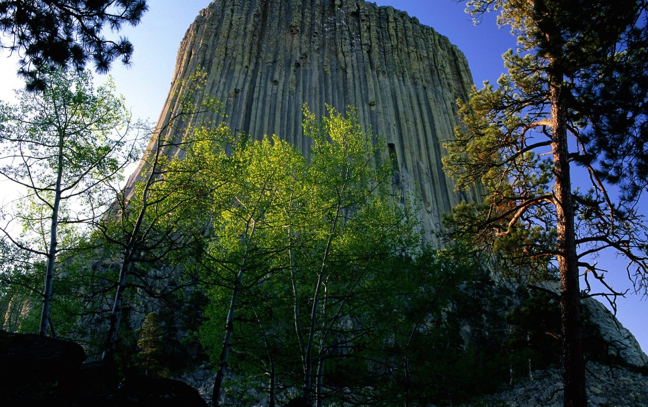 devil's tower wallpapers | devil's tower stock photos