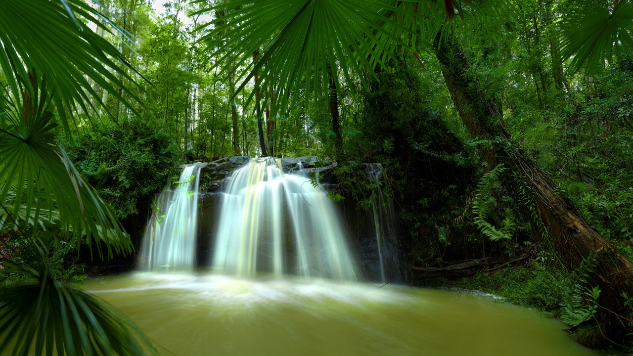Australia Nature, waterfall, forest wallpapers