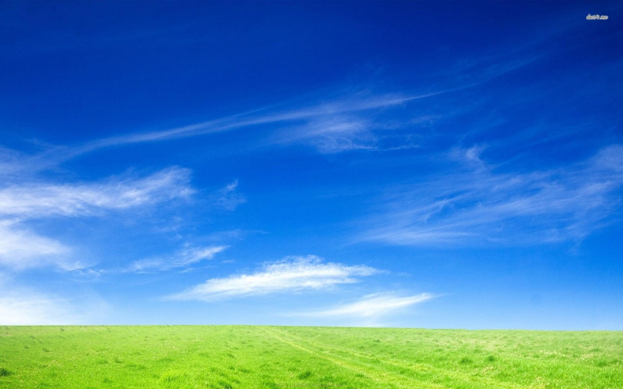 Field under clear sky, nature wallpapers