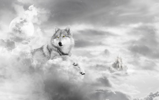 Wolf sky wallpapers