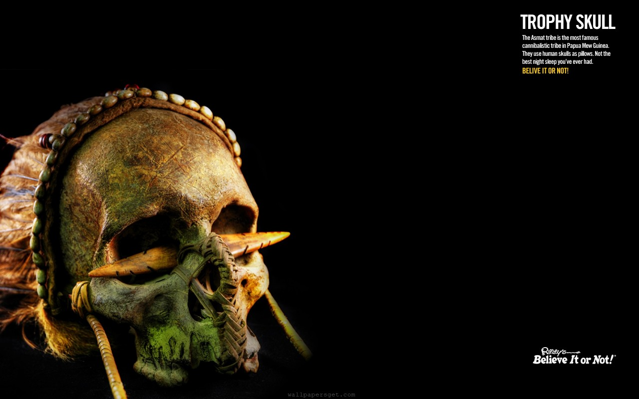 Cannibal Skull, themes, art wallpapers
