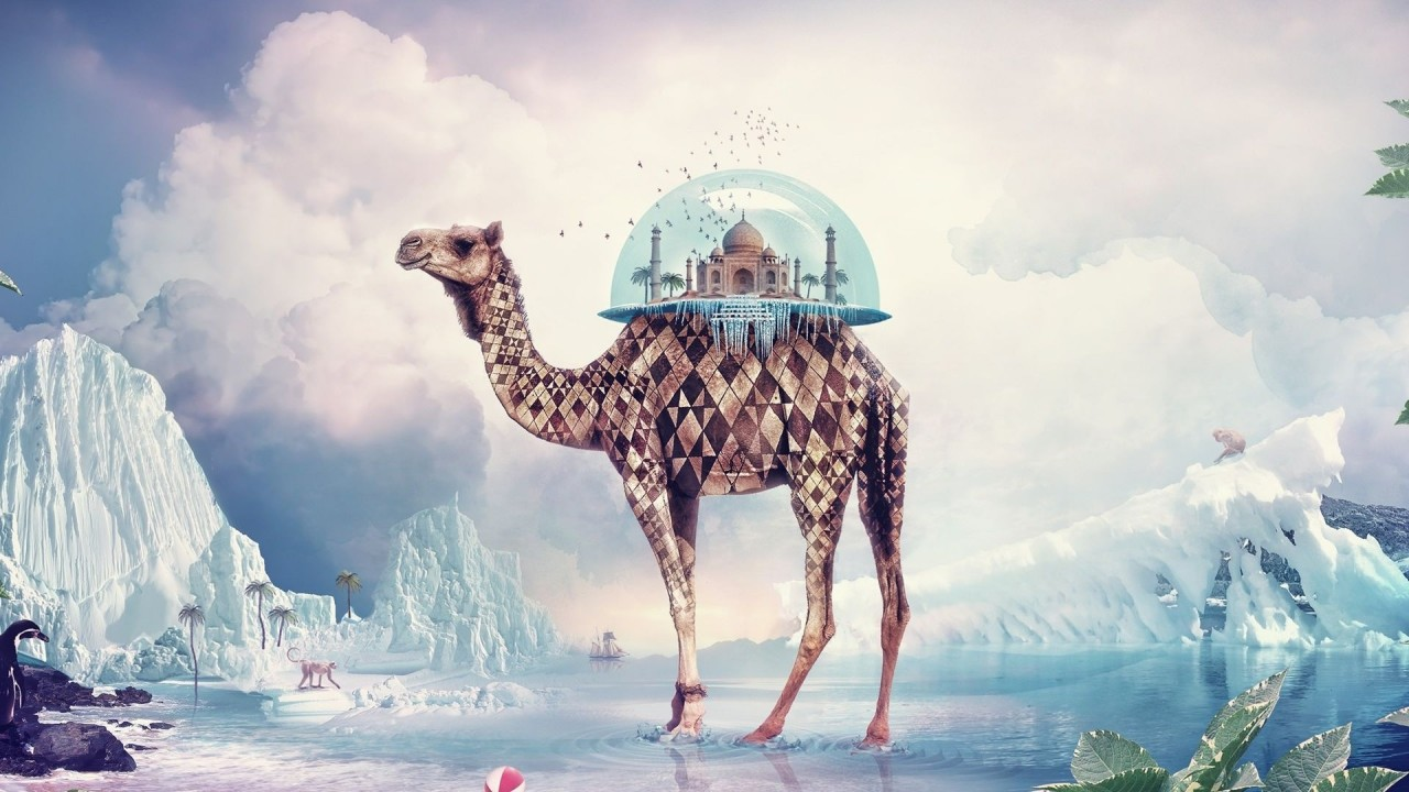 Camel carrying the Taj Mahal, digital-art wallpapers
