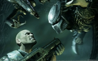 Alien Vs Predator, extraterrestres, consola, juegos wallpapers