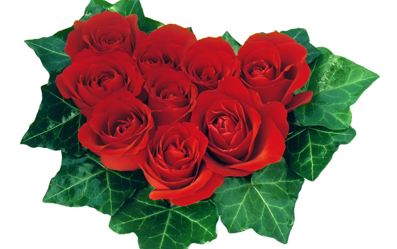 Leaf Roses Heart wallpapers