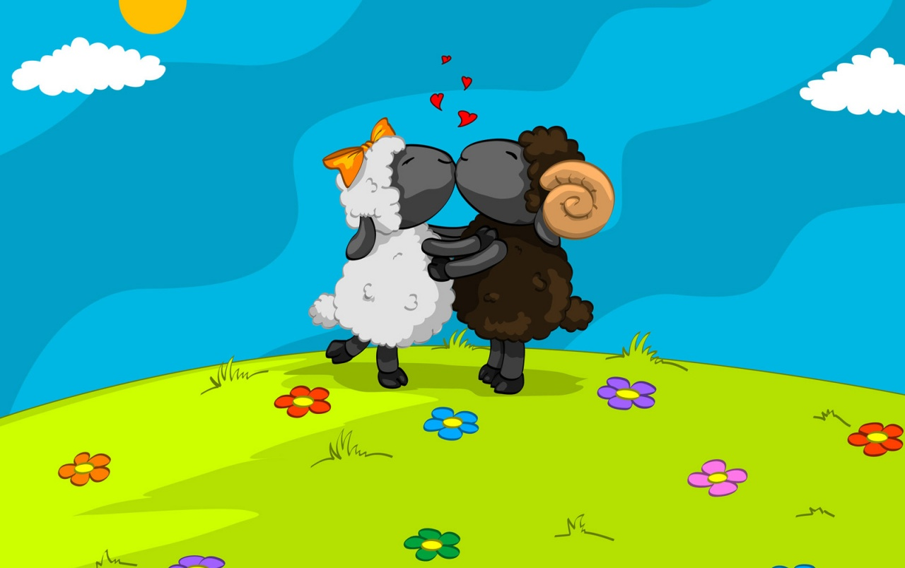 Sheep love wallpapers