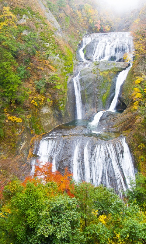 480x800 Waterfall Cascade Vivid Autumn