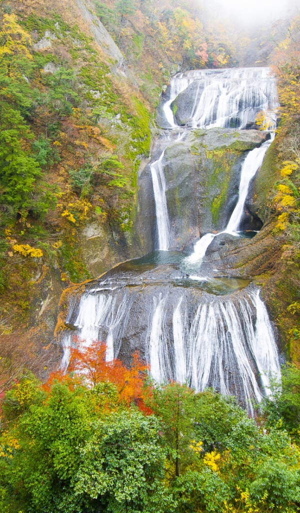 600x1024 Waterfall Cascade Vivid Autumn