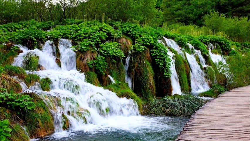 646x220 Waterfalls Bridge Plants Trees