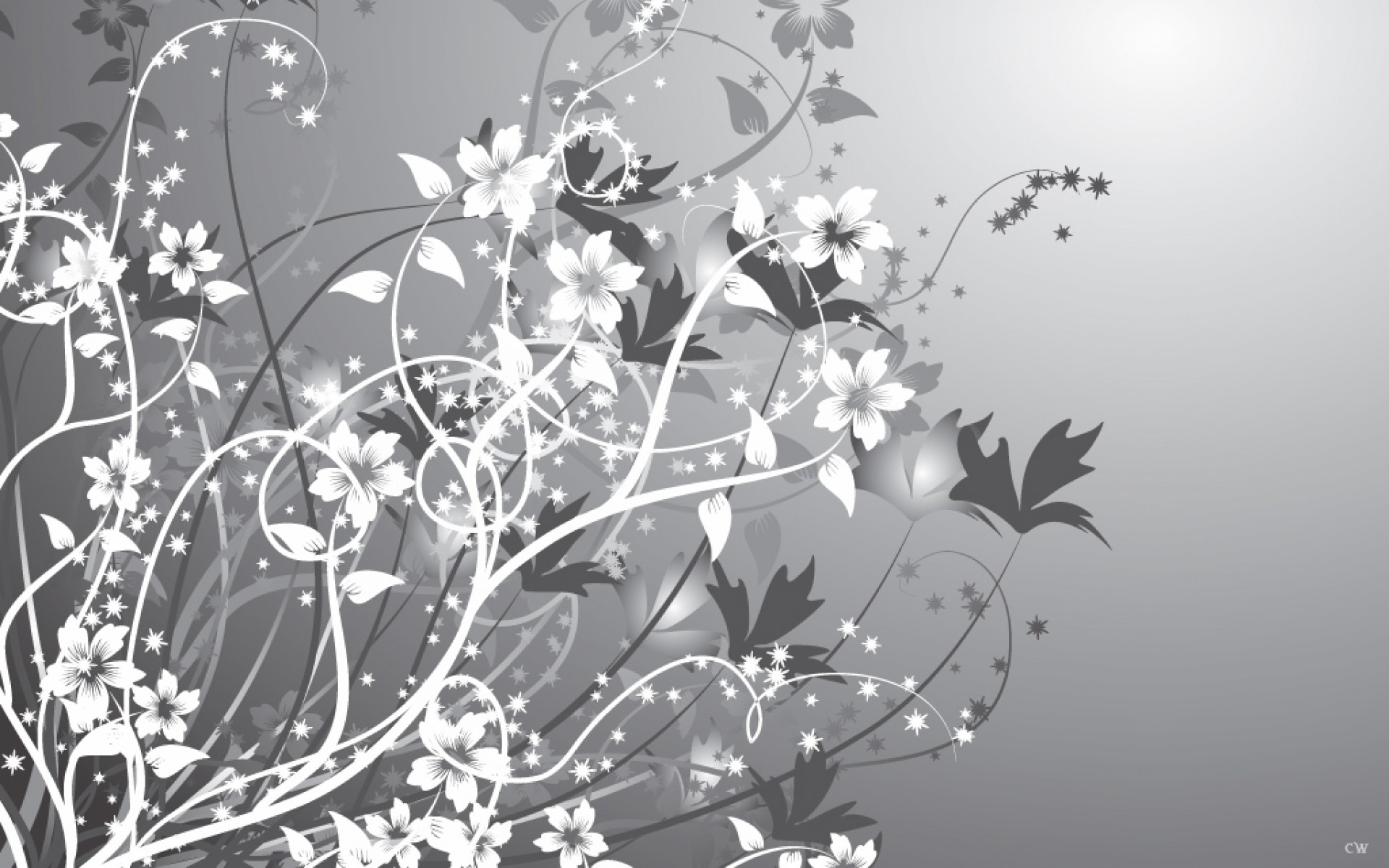1920x1200 white gray flowers abstract desktop pc and mac wallpaper mightylinksfo