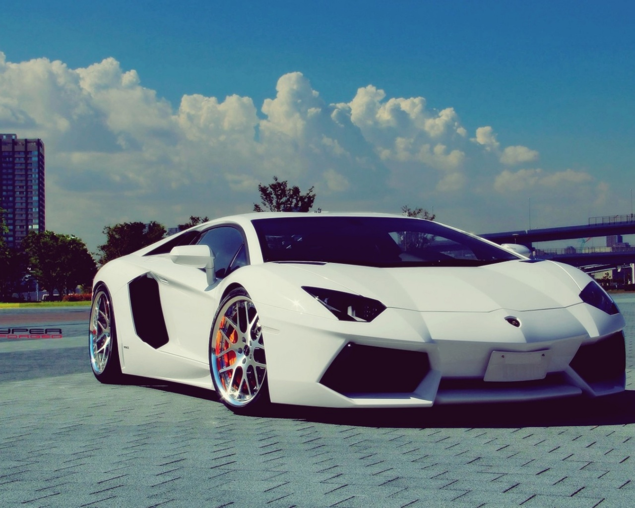 Top Wallpaper Mac Lamborghini - white-lamborghini-aventador-chrome-rims_wallpapers_36175_1280x1024  Pic_211630.jpg