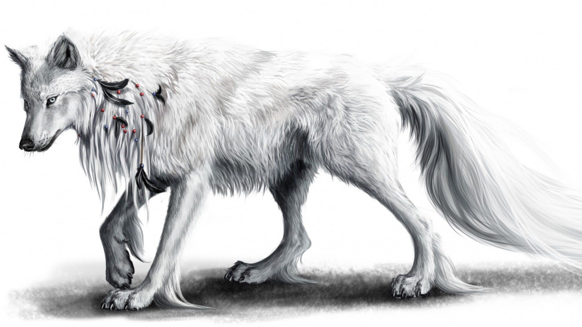 Download Wallpaper Mac Wolf - white-wolf--black-feathers_wallpapers_50558_1920x1080  Best Photo Reference_146019.jpg